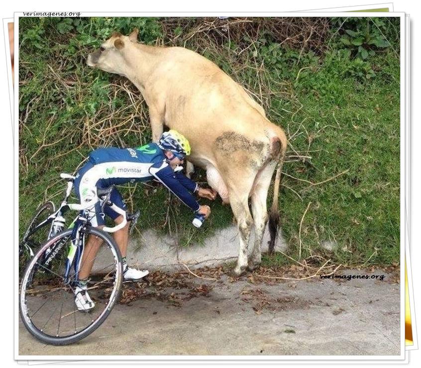 A falta de agua, buena es la leche