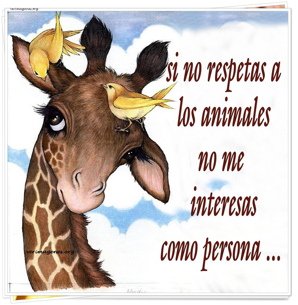 Si no respetas a los animales