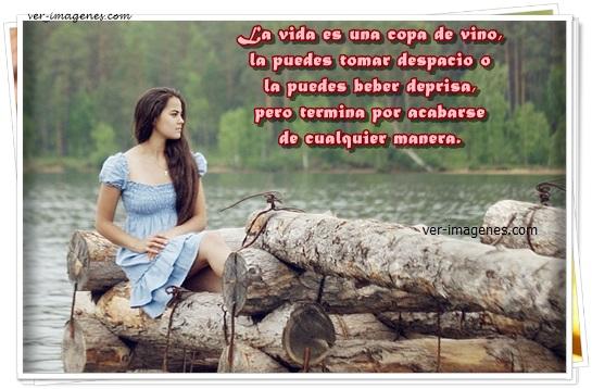 Imagen La vida es una copa de vino