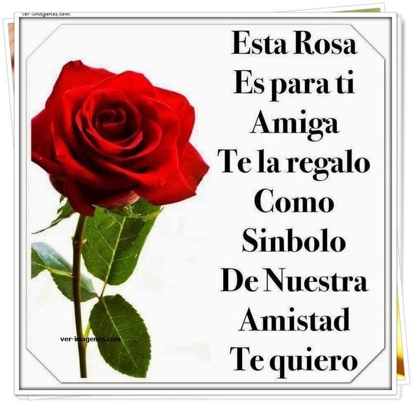Imagen Esta rosa es para ti