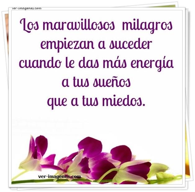 Los maravillosos milagros