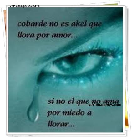 Cobarde no es aquel que llora por amor