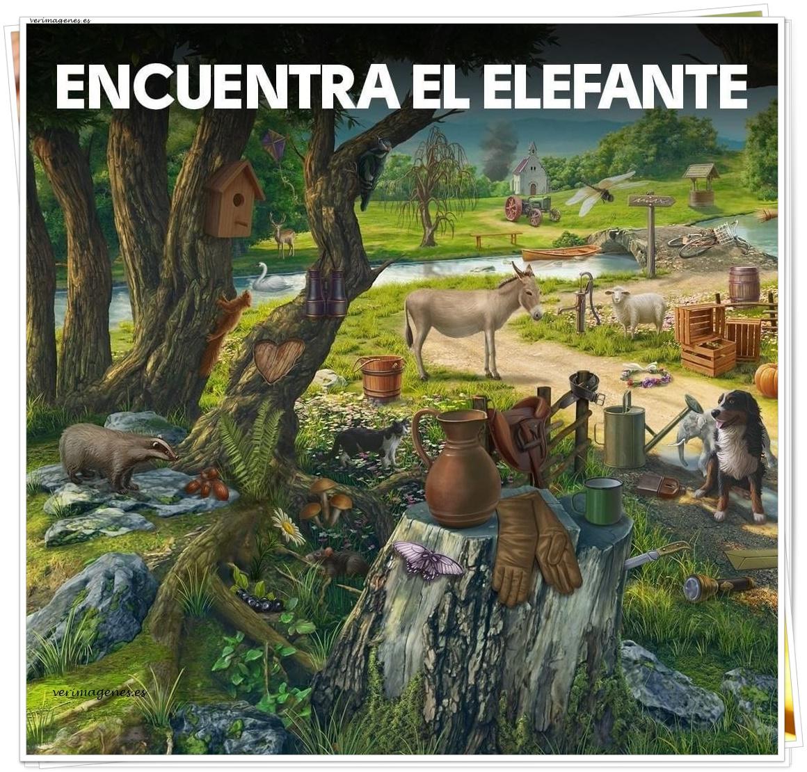 Imagen Encuentra el elefante